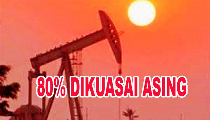 80% Lahan Migas Indonesia Sudah Dimiliki Asing