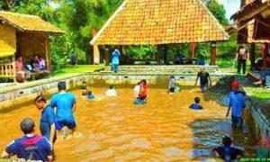 Dukumentasi - Outbond kids Program at Desa Sawah / Foto Istimewa/Nusantaranews