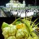 Kenduri Ketupan dan Takjil 15 Ramadhan Wajo/Ilustrasi SelArt/Nusantaranews