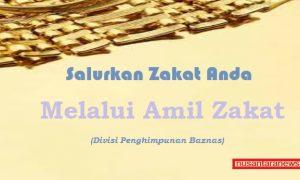 Salurkan Zakat Anda Melalui Lembaga Amil Zakat/Ilustrasi NUSANTARANEWS/SelArt