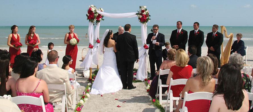 Beach Wedding Party/Majalah pernikahan