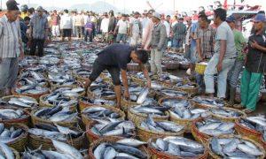 Lelang ikan hasil tangkapan nelayan/Foto via Antara Ampelsa/Nusantaranews