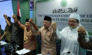 Dokumentasi MUI Serukan Perdamaian di Papua/Foto Nusantaranews