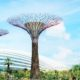 Bay South Garden Solar Trees/ Ilustrasi nusantaranews via earthtechling