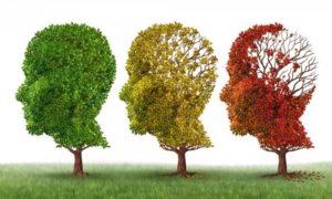 Ilustrasi Demensia Alzheimer/Foto cia inddit