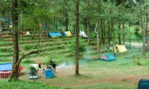 Piknik di alam bebas/Foto nusantaranews/Emer