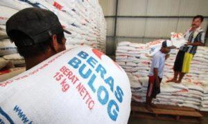 pekerja mengangkut dan menata beras di gudang bulog/Foto Istimewa/Nusantaranews