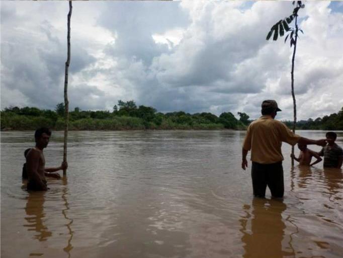 Prosesi Ritual Bedolob Suku Dayak Agabag Dengan Menancapkan dua batang kayu rambutan hutan/Foto Addy Santri