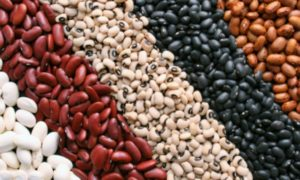 Jenis Kacang-kacangan untuk Peninggi Badan/Foto: IST