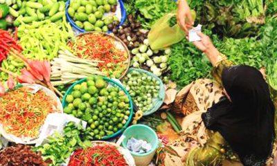 kebutuhan primer bangsa, pangan, kebutuhan pangan, pangan indonesia, kekayaan pangan, jenis pangan, pangan kebutuhan, kebutuhan negara, pangan nasional, kartel impor pangan, impor pangan, kecanduan impor pangan, pemburu rente pangan, produksi pangan, produksi pangan nasional, komoditas pangan, impor komoditas pangan, nusantaranews