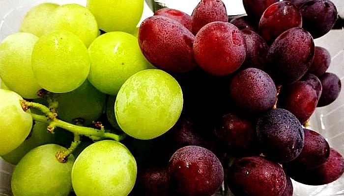 Manfaat anggur bagi kesehatan otak dan kinerja memori.