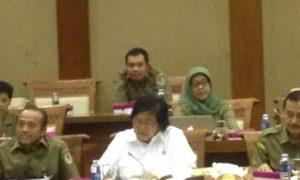 Menteri Lingkungan Hidup dan Kehutanan (MenLHK) Siti Nurbaya/Foto: Nusantaranews.co
