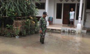 Banjir di Jember Genangi halaman rumah warga. Foto Sis/Nusantaranews