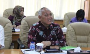 Direktur Jenderal (Dirjen) Kementan Tanaman Pangan. Foto Andika Nusantaranews