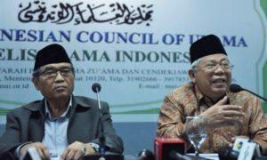 Ketua Komisi Fatwa MUI Hasanuddin (kiri) dan Ketua MUI Ma'ruf Amin/Foto: Dok. AntaraFoto (Hafidz)