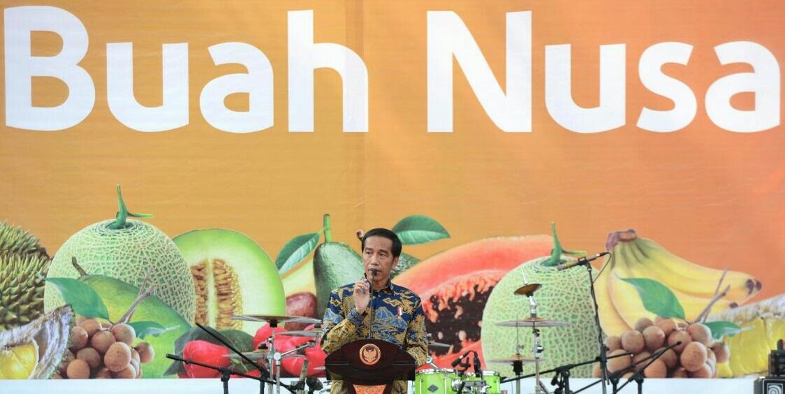 Presiden Jokowi saat melakukan pembukaan Fruit Indonesia 2016 di Parkir Timur Senayan Jakarta. Foto Andika/Nusantaranews