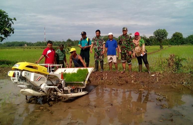 Babinsa Riwotamtu Ramil 0824/13 Galang Program Pertahanan Pangan Nasional/Foto Sis24