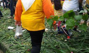 Taman Rusak dan Sampah Berserakan Usai CFD Aksi 412/ Foto Istimewa