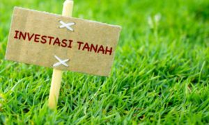 Kecenderungan orang Indonesia melakukan investasi tanah. Foto Ilustrasi/IST