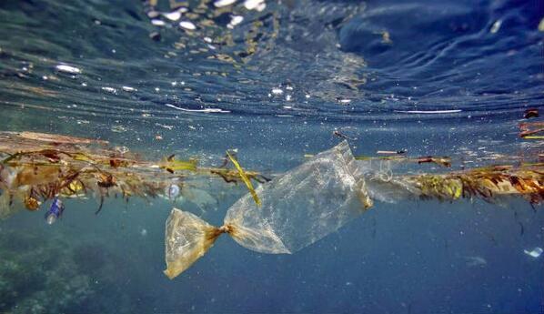 Sampah Plastik di Laut. Foto Ilustrasi/ist