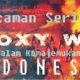 Ancaman Serius Proxy War dalam Kemajemukan Indonesia/Ilustrasi Nusantaranews/Gambar via southfront.org