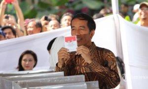 Jokowi Dapat Nomor Urut 269 di TPS Gambir/Foto: Dok. Tribunnews