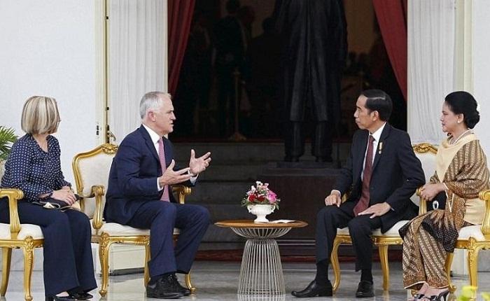 Presiden Joko Widodo dan Perdana Menteri Australia Malcolm Turnbull/Foto: Dok. dailymail
