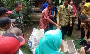 Sosialisasi Pembenihan Padi/Foto Dok. Pribadi/Nusantaranews
