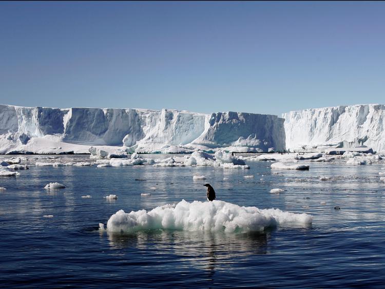 Es di di Antartika Meleleh/foto Istimewa/Nusantaranews
