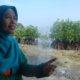 Mahariah (47) berjuang untuk menambah luas area hutan mangrove agar terjadi keseimbahan ekosistem/Foto Dok. Pribadi/Nusantaranews