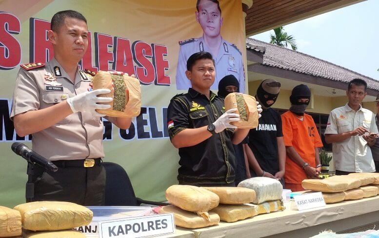 Polisi sita ganja/Foto via radalamsel/Nusantaranews