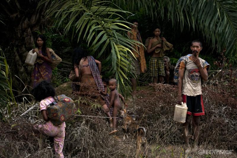 Penduduk lokal di Jambi/Foto via greenpeace/Nusantaranews