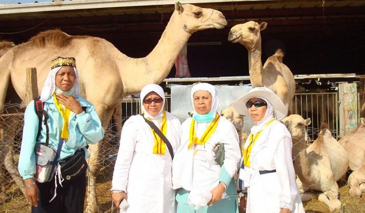 Jamaah Haji Selfi dengan Unta/Foto via gomuslim/Nusantaranews