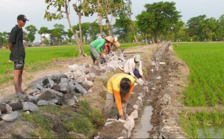 Pembangunan Desa/Ilustrasi/Croup/Nusantaranews
