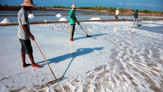 Petani garam/Foto via cnn/Nusantaranews