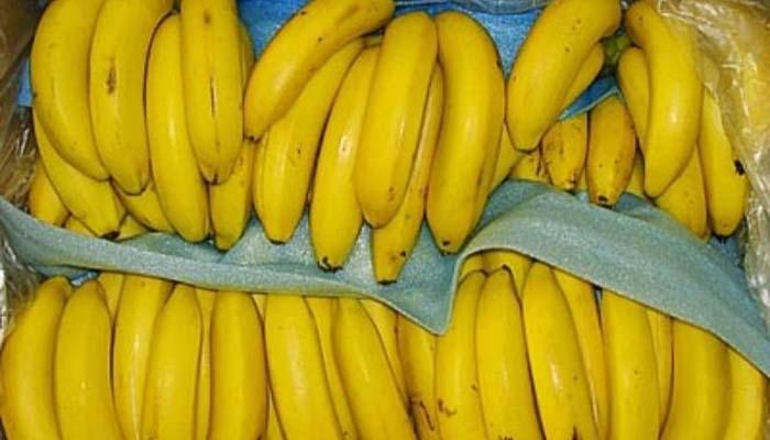 Pisang Kuning (Foto Istimewa)