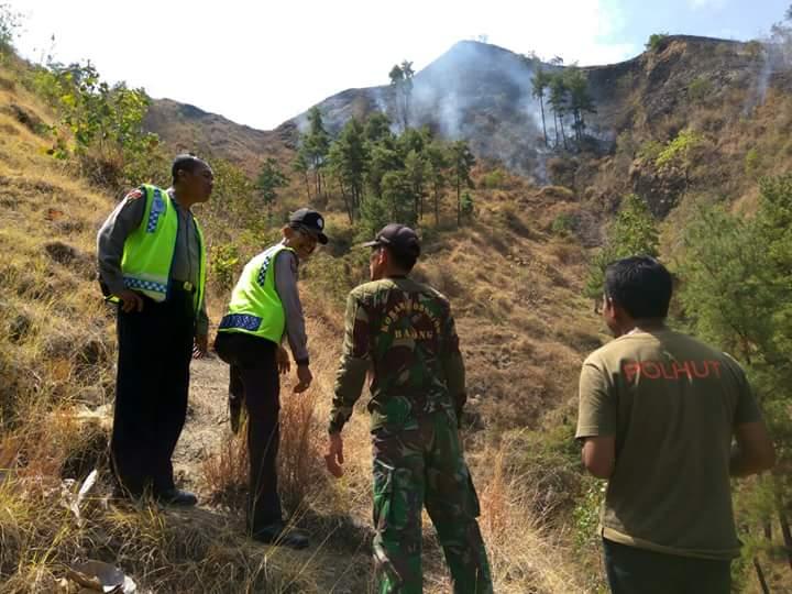 Hutan Ponorogo terbakar/Foto Nurcholis/Nusantaranews