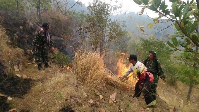 Anggota TNI dan Perhutani memadamkan api dalam kebakaran hutan di Ponorogo. (Foto : Muh Nurcholis)