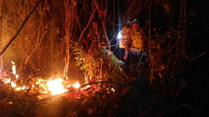 Hutan di Gunung Gomak yang masuk wilayah Desa Sukosari, Kecamatan Kauman, Kabupaten Ponorogo terbakar hebat. Foto Muh Nurcholis/ NusantaraNews.co