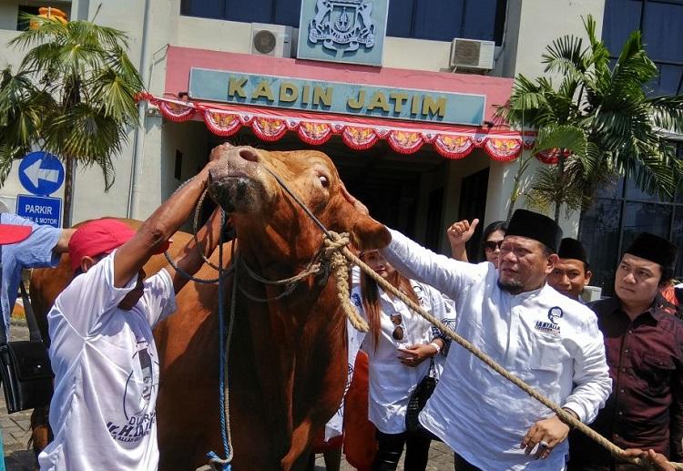 La Nyalla Nyerahih Hewan Kurban/Foto Yudi/Nusantaranews