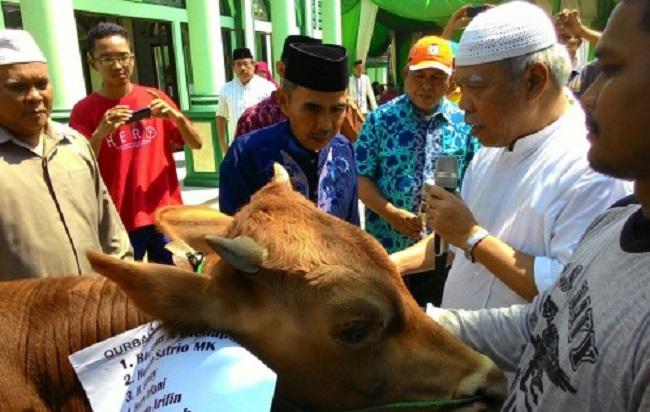 Menteri PUPR, Basuki Hadimuljono usai Sholat Idul Adha. Foto: Dok. Humas KemenPUPR