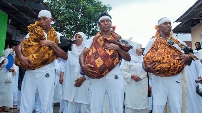 Tokoh Adat Masyarakat Desa Tuhehu, Ambon, Maluku menggendong hewan ternak sebagai Kurban. Foto: Dok. (Embong Salampessy/Antara