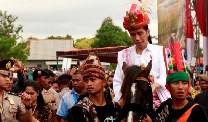 Dua ekor kuda sandalwood yang diberikan oleh masyarakat di Nusa Tenggara Timur (NTT) kepada Presiden Joko Widodo (Jokowi) telah dinyatakan menjadi milik negara. Foto: Dok. Tempo