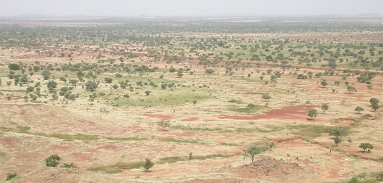 Tanah kering di wilayah Sahel di Afrika Barat. (Foto: environewsnigeria.com)