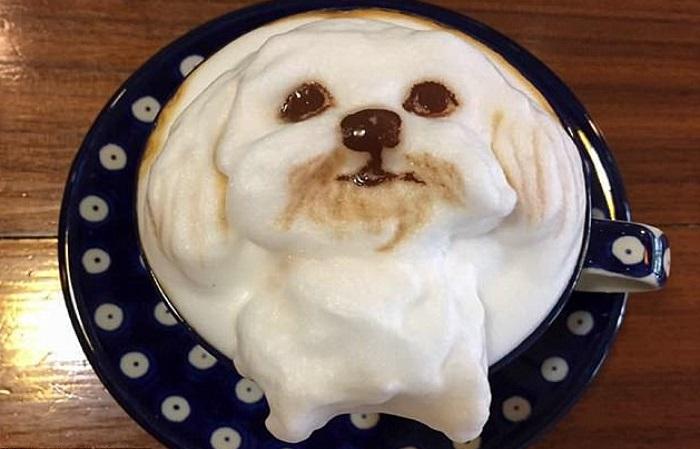 Pecinta anjing berbondong-bondong menyambangi sebuah kafe di kopi di Taiwan. Foto: Caters News Agency