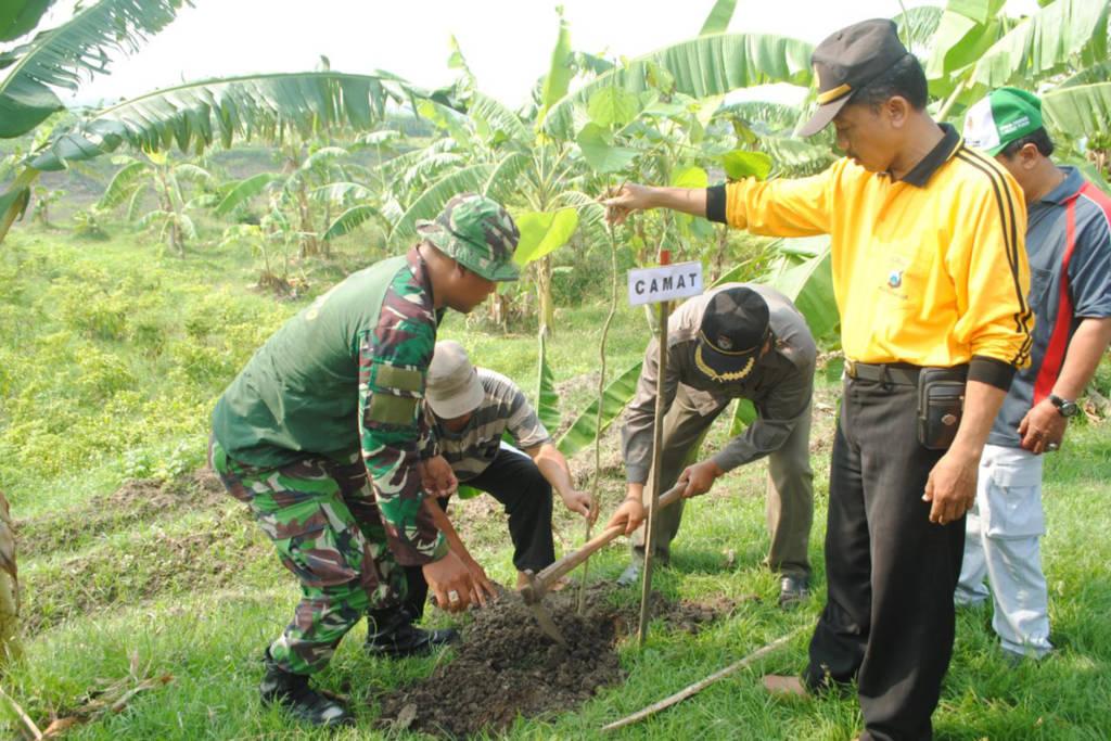 Koramil 0810/07 Patianrowo melaksanakan penghijauan bekerjasama dengan Dinas Perhutanan Nganjuk. Foto: Istimewa