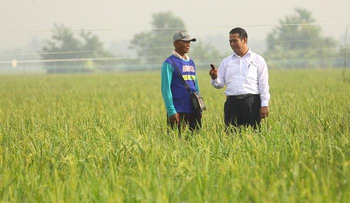 Menteri Pertanian Andi Amran Sulaiman bersama petani. Foto: Dok. Kementan