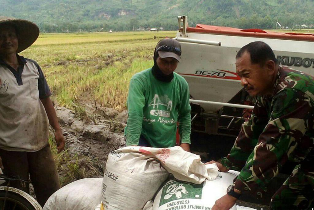Serda Muhrodin bersama kelompok tani Sukses, melaksanakan kegiatan panen padi di lokasi sawah Desa Ngepeh, seluas 40 Ha.
