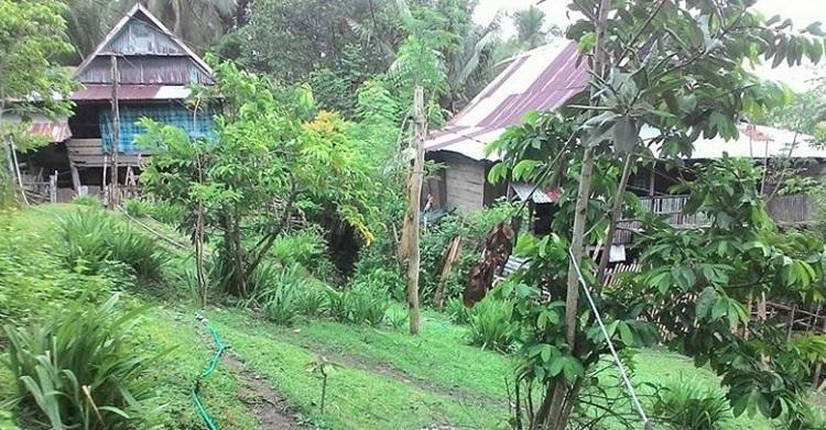 Desa Rea-Rea yang berada di kepulauan Selayar, Sulses (Foto Fadly Syarif)
