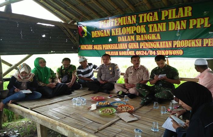 Babinsa, Penyuluh Pertanian Lapangan (PPL), 3 Pilar dan Kelompok Tani Makmur Sukowono Jember menggelar musyawarah dan komunikasi sosial (Komsos)